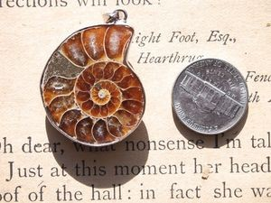Ammonite Fossil Nautilus Pendant with Bezel and Bail